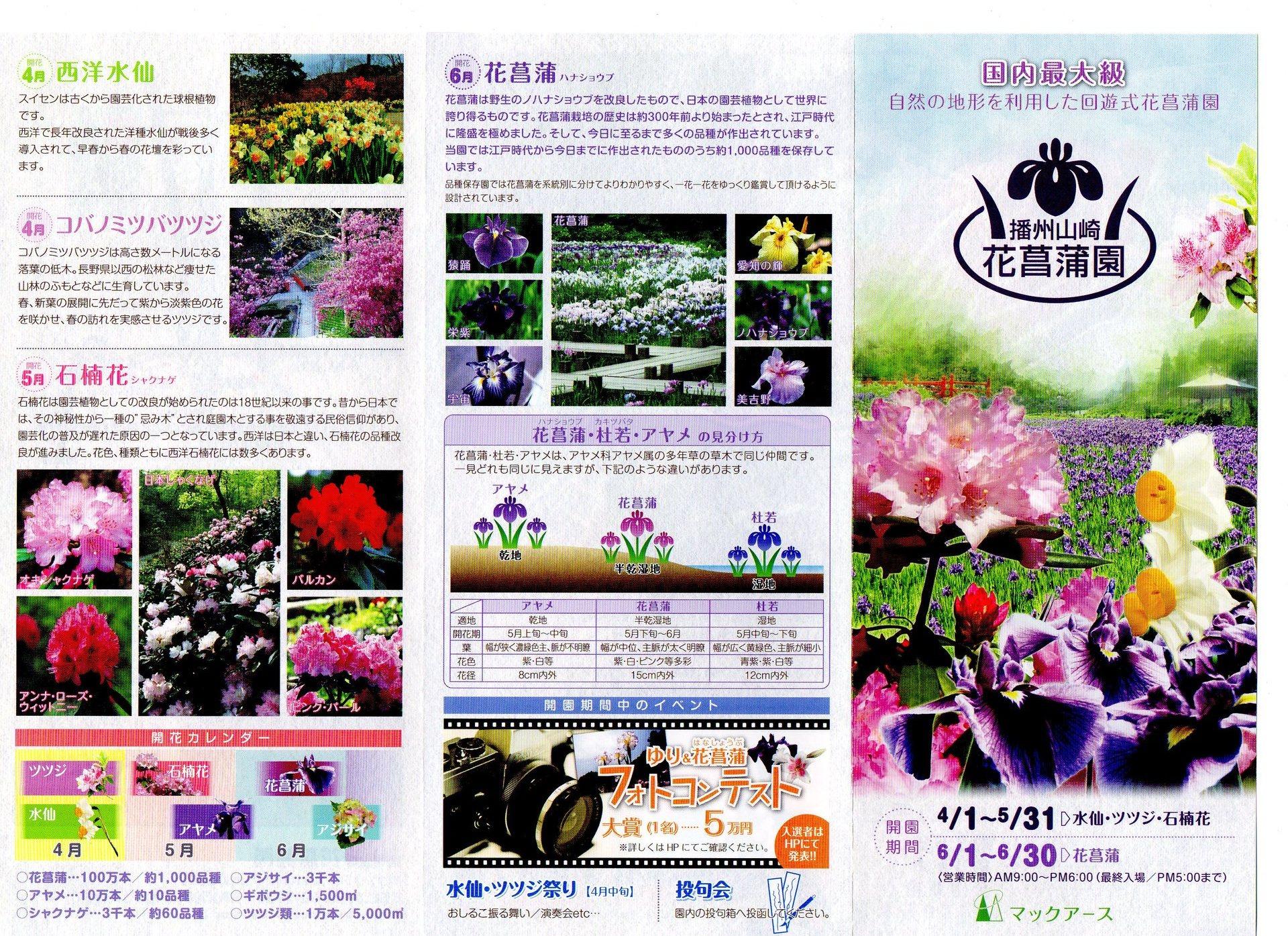 shobuen-leaflet1.jpg
